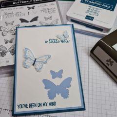 Butterfly-gala1