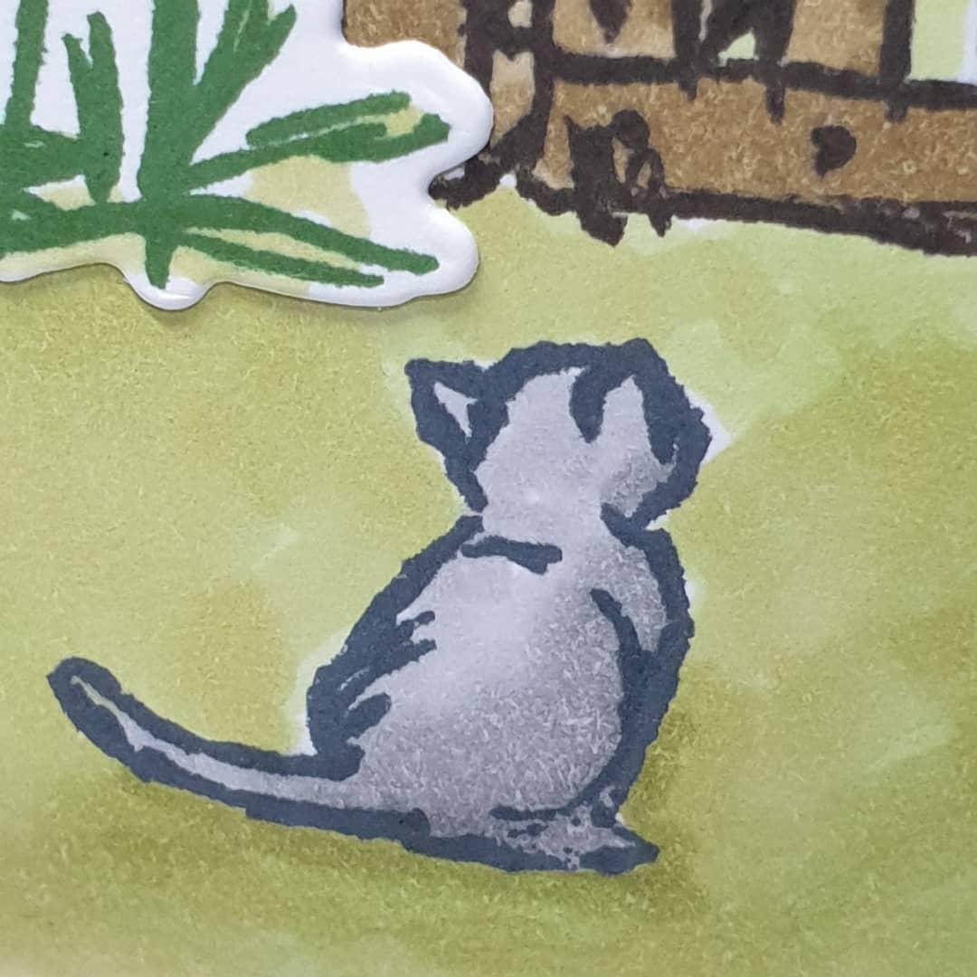 Grace's Garden Stampin' Up! Kitten