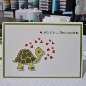 turtle friends